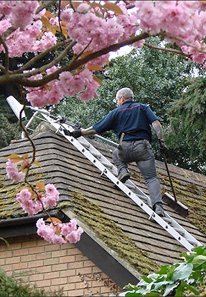 Our staff cleaning the moss from a roof in South Benfleet near Basildon